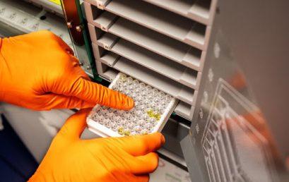 Sanquin: ongeveer 3% van donors heeft corona antistoffen